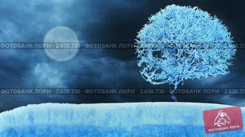 Купить «Замерзшее дерево в лунную ночь», видеоролик № 2638730, снято 21 сентября 2010 г. (c) Beerkoff / Фотобанк Лори
