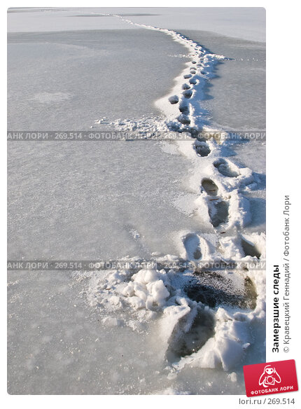 Купить «Замерзшие следы», фото № 269514, снято 28 января 2005 г. (c) Кравецкий Геннадий / Фотобанк Лори