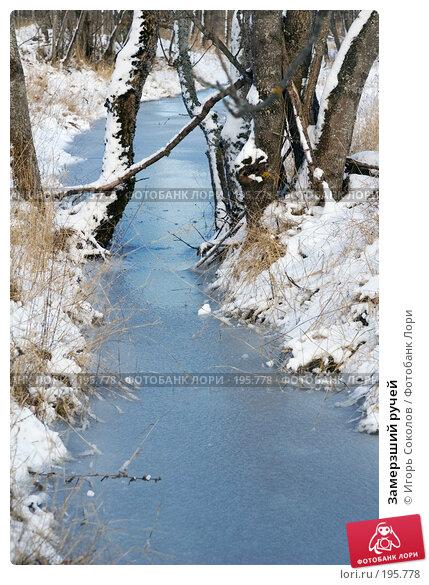 Замерзший ручей, фото № 195778, снято 3 февраля 2008 г. (c) Игорь Соколов / Фотобанк Лори