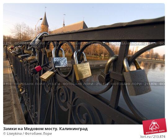 Замки на Медовом мосту. Калининград, фото № 213874, снято 30 декабря 2007 г. (c) Liseykina / Фотобанк Лори