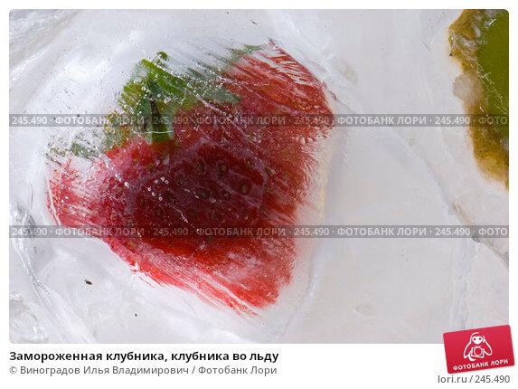 Замороженная клубника, клубника во льду, фото № 245490, снято 7 декабря 2007 г. (c) Виноградов Илья Владимирович / Фотобанк Лори