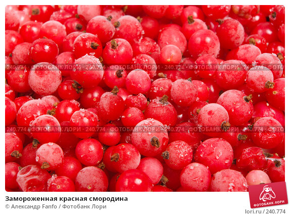 Замороженная красная смородина, фото № 240774, снято 26 июня 2017 г. (c) Александр Fanfo / Фотобанк Лори