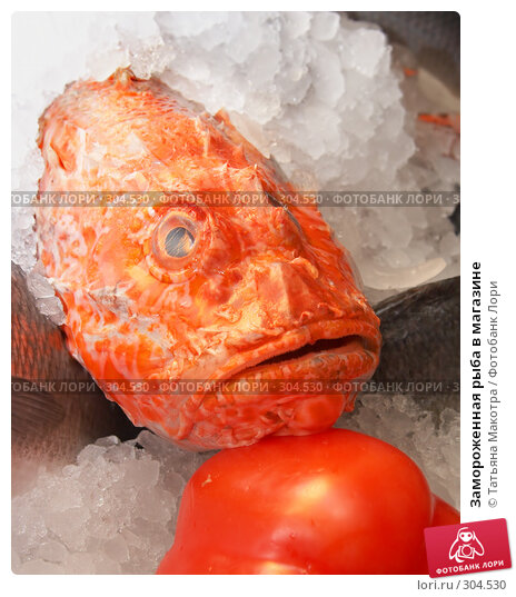 Замороженная рыба в магазине, фото № 304530, снято 17 мая 2008 г. (c) Татьяна Макотра / Фотобанк Лори