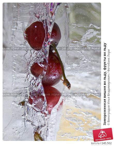 Замороженная вишня во льду, фрукты во льду, фото № 245502, снято 7 декабря 2007 г. (c) Виноградов Илья Владимирович / Фотобанк Лори