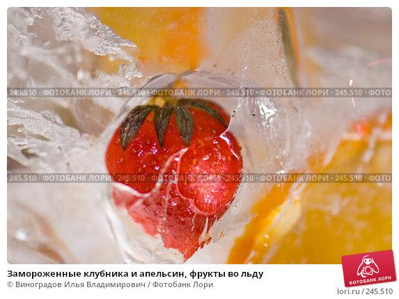 Купить «Замороженные клубника и апельсин, фрукты во льду», фото № 245510, снято 7 декабря 2007 г. (c) Виноградов Илья Владимирович / Фотобанк Лори