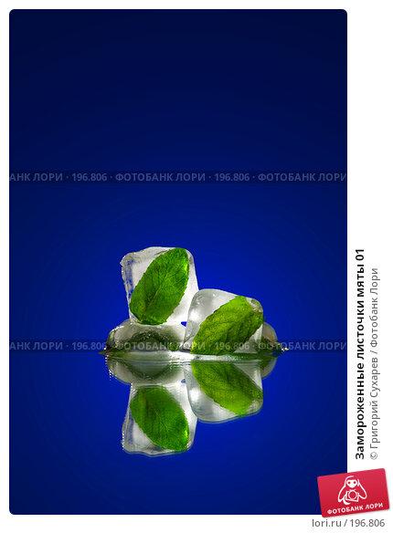 Замороженные листочки мяты 01, фото № 196806, снято 20 сентября 2017 г. (c) Григорий Сухарев / Фотобанк Лори