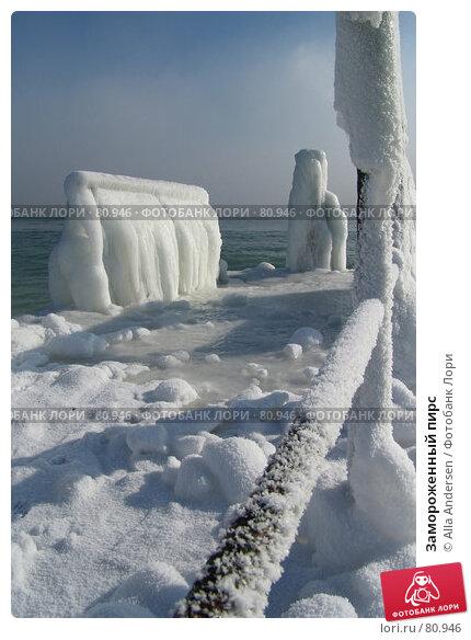 Замороженный пирс, фото № 80946, снято 25 января 2006 г. (c) Alla Andersen / Фотобанк Лори