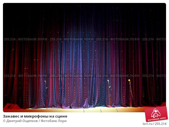 Занавес и микрофоны на сцене, фото № 255214, снято 12 апреля 2008 г. (c) Дмитрий Ощепков / Фотобанк Лори