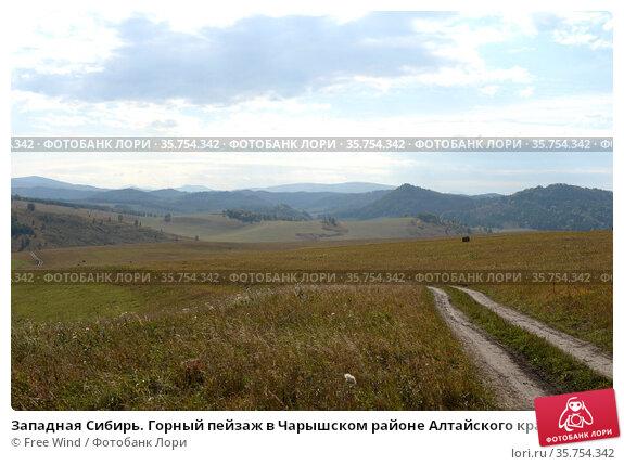 Западная Сибирь. Горный пейзаж в Чарышском районе Алтайского края. Стоковое фото, фотограф Free Wind / Фотобанк Лори