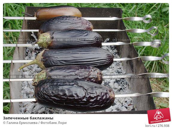 Купить «Запеченные баклажаны», фото № 276938, снято 7 августа 2007 г. (c) Галина Ермолаева / Фотобанк Лори
