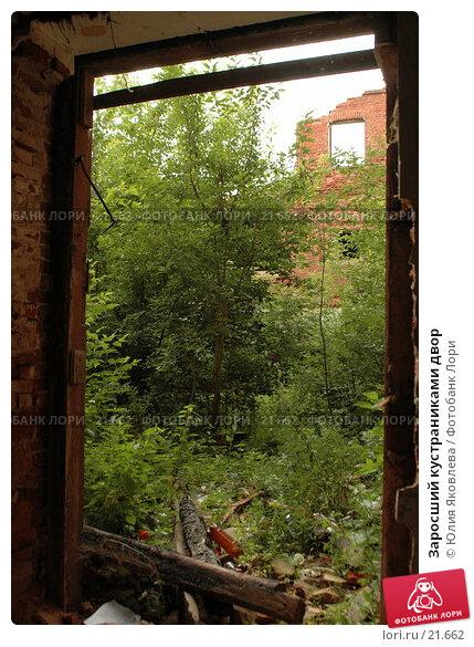 Купить «Заросший кустраниками двор», фото № 21662, снято 9 августа 2006 г. (c) Юлия Яковлева / Фотобанк Лори