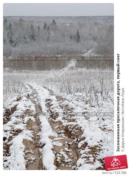 Купить «Заснеженная проселочная дорога, первый снег», фото № 123766, снято 4 ноября 2007 г. (c) Дарья Олеринская / Фотобанк Лори