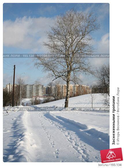 Заснеженными тропами, фото № 193134, снято 3 февраля 2008 г. (c) Игорь Веснинов / Фотобанк Лори