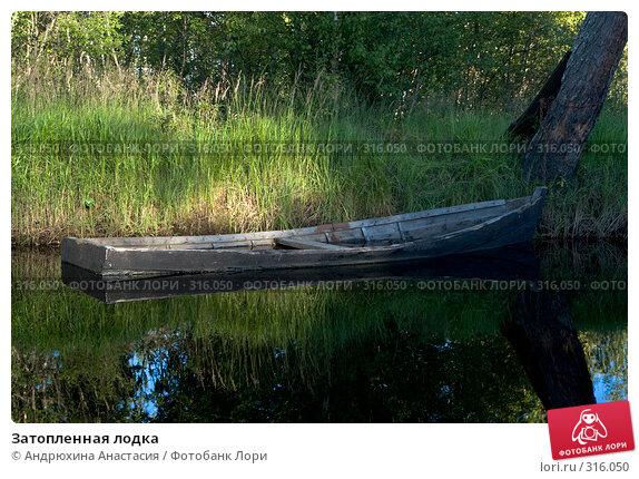 Затопленная лодка, фото № 316050, снято 23 августа 2007 г. (c) Андрюхина Анастасия / Фотобанк Лори