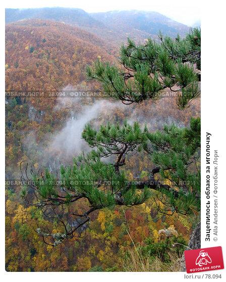 Купить «Зацепилось облако за иголочку», фото № 78094, снято 26 октября 2006 г. (c) Alla Andersen / Фотобанк Лори