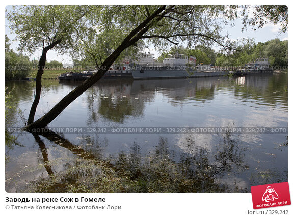 Заводь на реке Сож в Гомеле, фото № 329242, снято 14 июня 2008 г. (c) Татьяна Колесникова / Фотобанк Лори