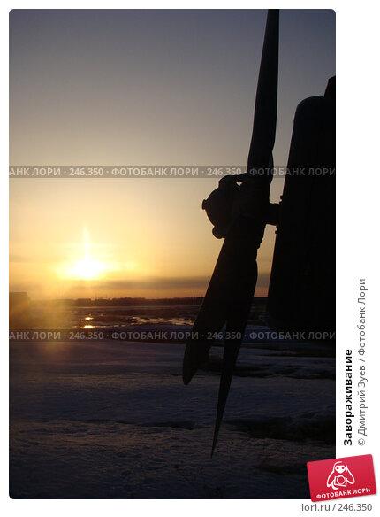 Завораживание, фото № 246350, снято 3 января 2007 г. (c) Дмитрий Зуев / Фотобанк Лори