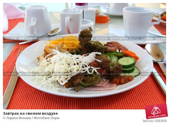 Завтрак на свежем воздухе, фото № 333810, снято 4 мая 2008 г. (c) Лариса Фокина / Фотобанк Лори