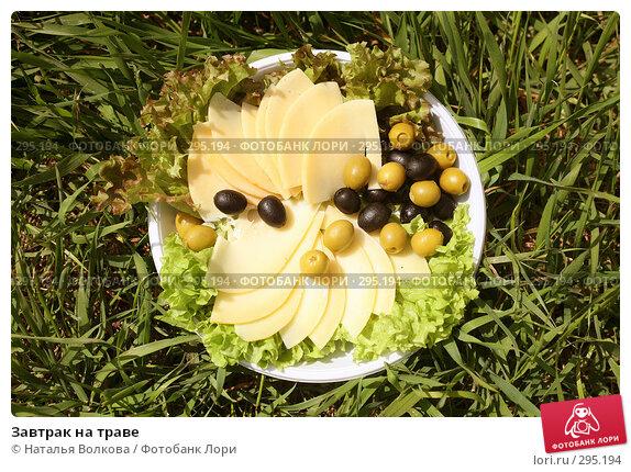 Завтрак на траве, фото № 295194, снято 17 мая 2008 г. (c) Наталья Волкова / Фотобанк Лори