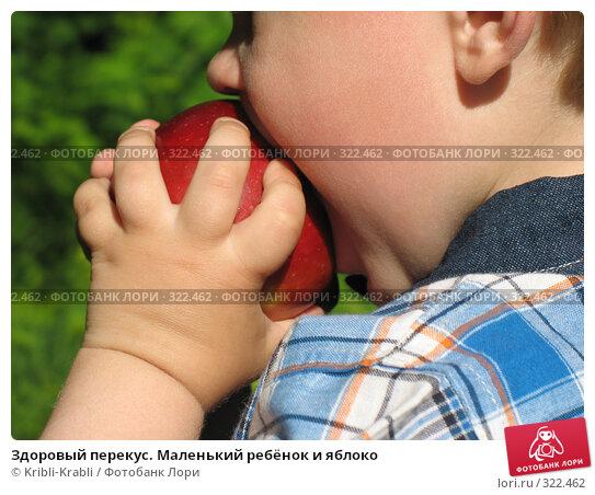 Здоровый перекус. Маленький ребёнок и яблоко, фото № 322462, снято 12 июня 2008 г. (c) Kribli-Krabli / Фотобанк Лори