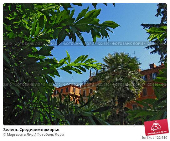 Зелень Средиземноморья, фото № 122610, снято 19 мая 2007 г. (c) Маргарита Лир / Фотобанк Лори