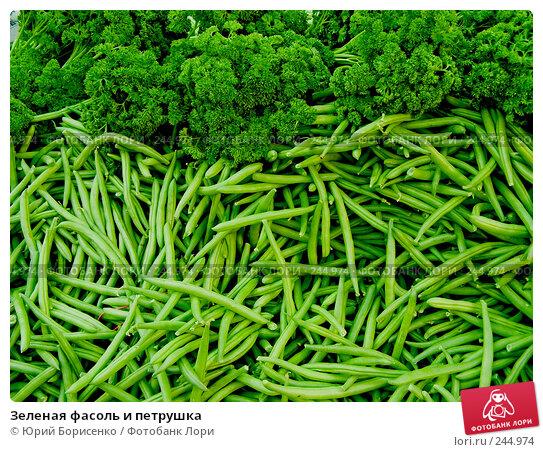 Зеленая фасоль и петрушка, фото № 244974, снято 20 октября 2007 г. (c) Юрий Борисенко / Фотобанк Лори