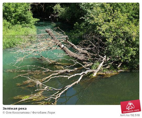 Зелёная река, фото № 92518, снято 16 июля 2007 г. (c) Оля Косолапова / Фотобанк Лори