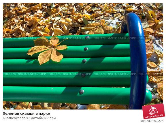Зеленая скамья в парке, фото № 189278, снято 31 октября 2006 г. (c) Бабенко Денис Юрьевич / Фотобанк Лори
