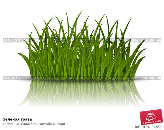 Купить «Зеленая трава», иллюстрация № 5109554 (c) Евгения Малахова / Фотобанк Лори