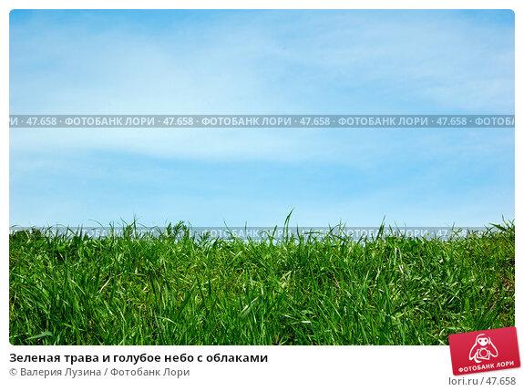 Зеленая трава и голубое небо с облаками, фото № 47658, снято 27 мая 2007 г. (c) Валерия Потапова / Фотобанк Лори