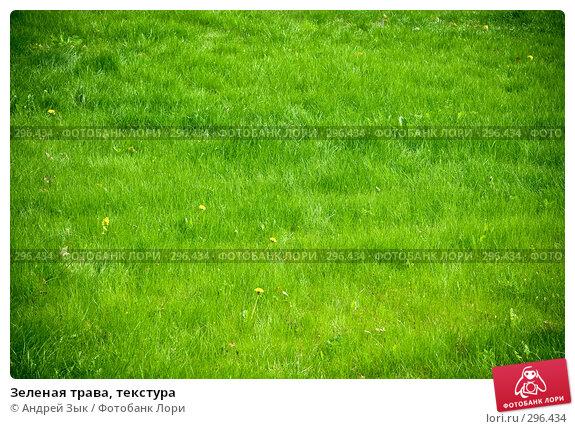 Зеленая трава, текстура, фото № 296434, снято 2 мая 2007 г. (c) Андрей Зык / Фотобанк Лори