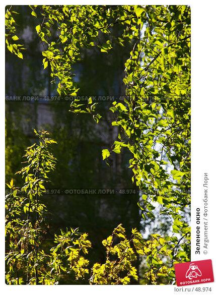 Зеленое окно, фото № 48974, снято 10 мая 2006 г. (c) Argument / Фотобанк Лори