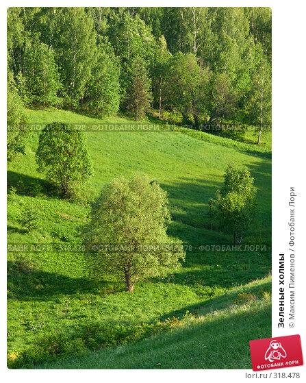 Зеленые холмы, фото № 318478, снято 25 мая 2008 г. (c) Максим Пименов / Фотобанк Лори
