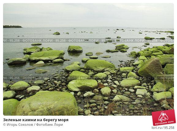Зеленые камни на берегу моря, фото № 95258, снято 23 марта 2017 г. (c) Игорь Соколов / Фотобанк Лори