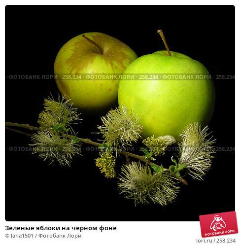 Зеленые яблоки на черном фоне, эксклюзивное фото № 258234, снято 16 апреля 2008 г. (c) lana1501 / Фотобанк Лори