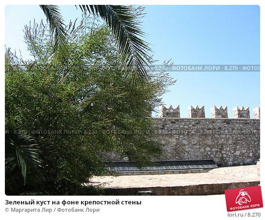 Зеленый куст на фоне крепостной стены, фото № 8270, снято 12 июля 2006 г. (c) Маргарита Лир / Фотобанк Лори