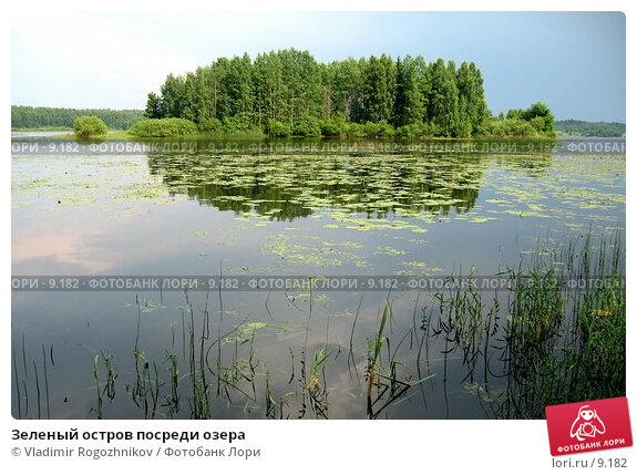 Купить «Зеленый остров посреди озера », фото № 9182, снято 8 июля 2006 г. (c) Vladimir Rogozhnikov / Фотобанк Лори