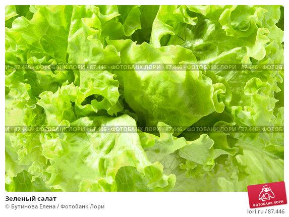 Зеленый салат, фото № 87446, снято 28 февраля 2017 г. (c) Бутинова Елена / Фотобанк Лори
