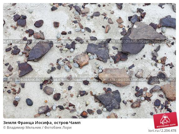 Купить «Земля Франца Иосифа, остров Чамп», фото № 2204478, снято 2 августа 2010 г. (c) Владимир Мельник / Фотобанк Лори