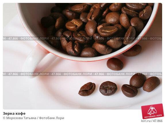 Зерна кофе, фото № 47866, снято 9 марта 2007 г. (c) Морозова Татьяна / Фотобанк Лори