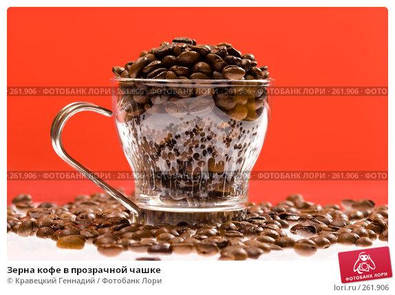 Зерна кофе в прозрачной чашке, фото № 261906, снято 2 февраля 2005 г. (c) Кравецкий Геннадий / Фотобанк Лори