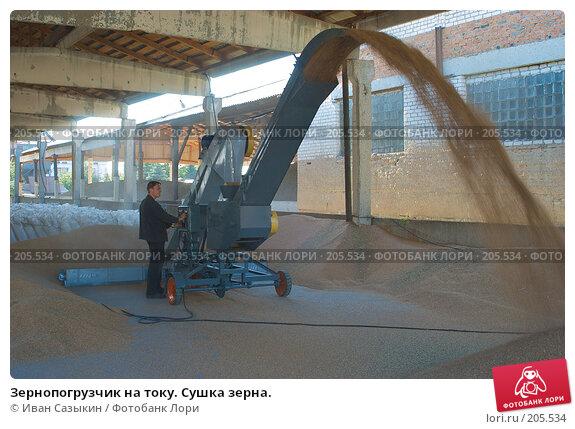 Купить «Зернопогрузчик на току. Сушка зерна.», фото № 205534, снято 6 сентября 2004 г. (c) Иван Сазыкин / Фотобанк Лори