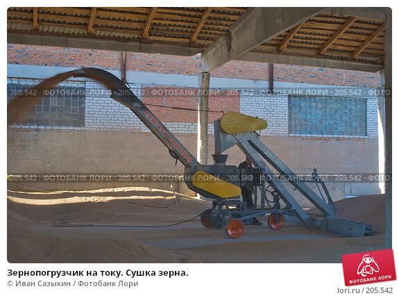 Зернопогрузчик на току. Сушка зерна., фото № 205542, снято 6 сентября 2004 г. (c) Иван Сазыкин / Фотобанк Лори