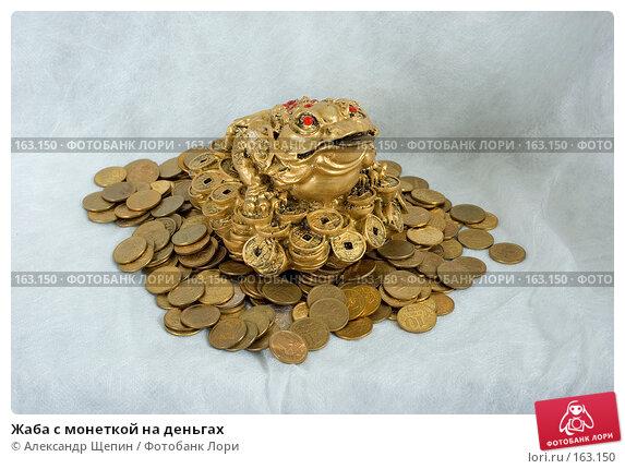 Купить «Жаба с монеткой на деньгах», эксклюзивное фото № 163150, снято 29 декабря 2007 г. (c) Александр Щепин / Фотобанк Лори