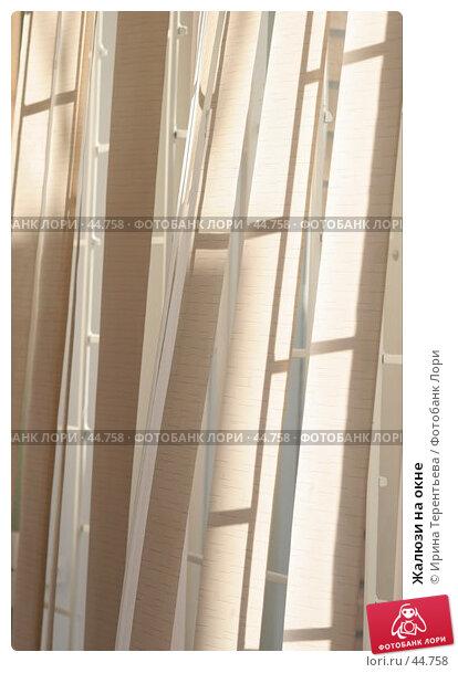 Купить «Жалюзи на окне», эксклюзивное фото № 44758, снято 15 апреля 2007 г. (c) Ирина Терентьева / Фотобанк Лори