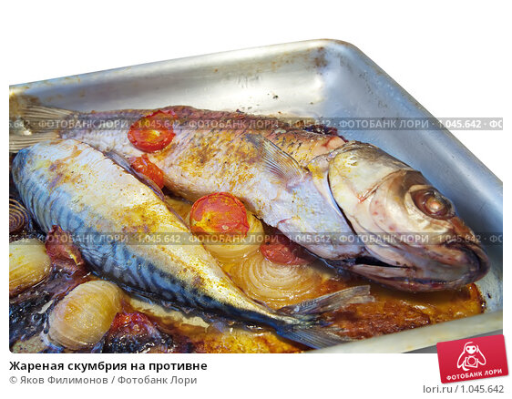 Рыба скумбрия рецепт фото