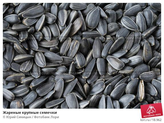 Жареные крупные семечки, фото № 18962, снято 22 февраля 2007 г. (c) Юрий Синицын / Фотобанк Лори