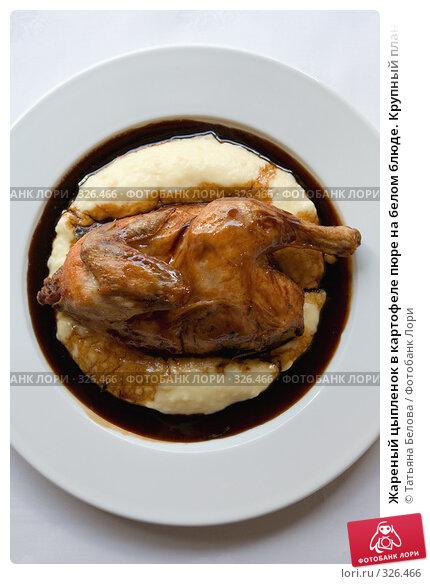 Жареный цыпленок в картофеле пюре на белом блюде. Крупный план, фото № 326466, снято 13 июня 2008 г. (c) Татьяна Белова / Фотобанк Лори