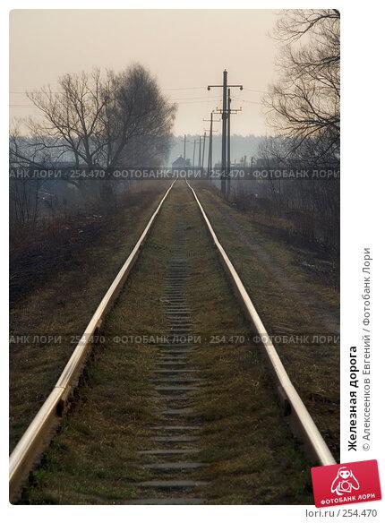 Железная дорога, фото № 254470, снято 7 апреля 2008 г. (c) Алексеенков Евгений / Фотобанк Лори