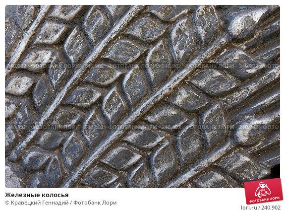 Железные колосья, фото № 240902, снято 17 января 2017 г. (c) Кравецкий Геннадий / Фотобанк Лори